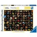 99 atemberaubende Tiere, 1000 Teile