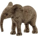 Afrikanisches Elefantenbaby