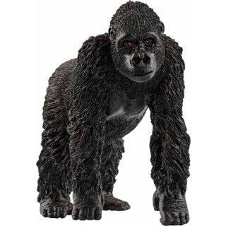 Gorilla Weibchen (a)