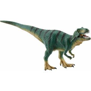 Jungtier Tyrannosaurus Rex