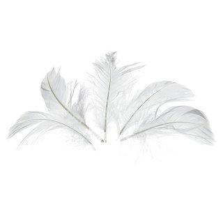 Deko-Federn, weiß, , 80 - 100 mm, 10 g ~ 110 Stk.